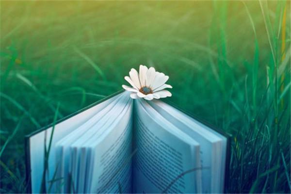 小说《岷山异事》在线全文阅读